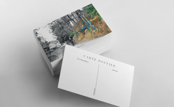 example of a Tree Roots post card